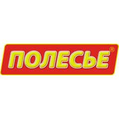 Конструкторы Полесье